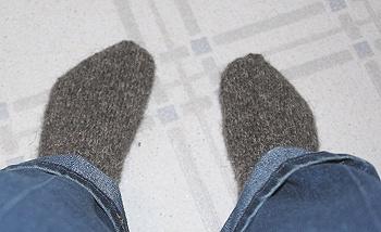 Herdwick-socks-on117